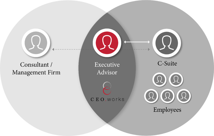 CEOworks is an executive advisory firm