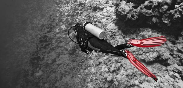 scuba diver near a coral reef